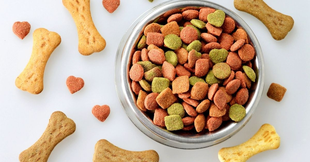 dry food for schnauzers